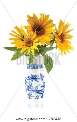 vazesunflowerisolated