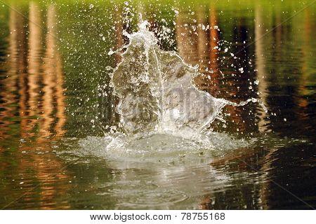 Close Up Stop Shot Of Splash Shot On Water