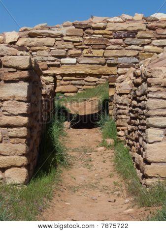 Lizard's Door