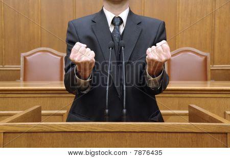 parliamentary speech