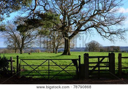 Countryside gates.