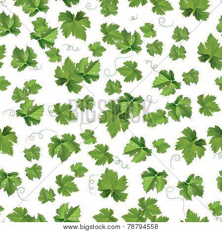 Seedlings leaves seamless pattern