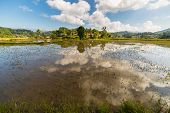 stock photo of mud-hut  - Farmlands villages and bright rice fields in Tana Toraja South Sulawesi Indonesia - JPG