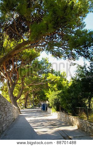 Landscape At Bol, Brac, Croatia