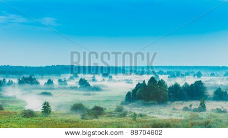 Russian Nature Landscape, Late Summer Forest In Morning Fog. Pan