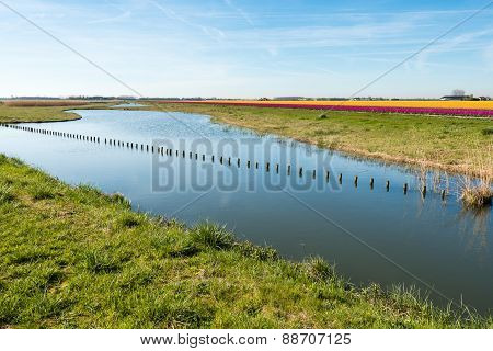Long Row Of Wooden Posts In The Mirror-smooth Water Surface