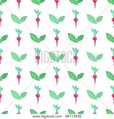 Seamless watercolor pattern with radishes on the white background, aquarelle.  Vector illustration.