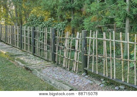 Wood Fence And Nature