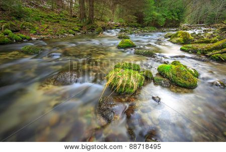 Run of mountain river with green stones