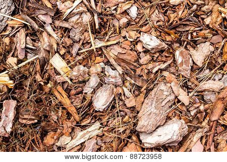 Shredded bark texture