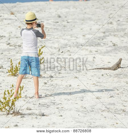 Little boy photographing iguana