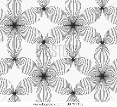Monochrome Gray Striped Six Pedal Flowers