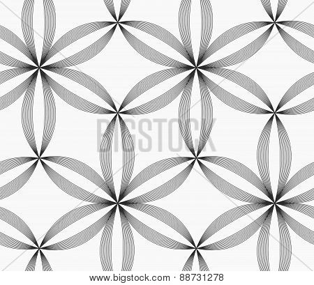 Monochrome Slim Gray Striped Six Pedal Flowers