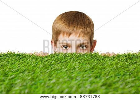 Portrait of a boy peeping out through grass