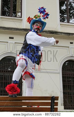Funny Clown With Typical Costumes