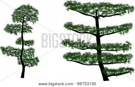 illustration with large green trees isolated on white background