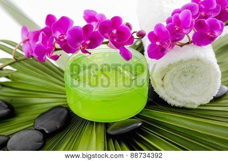 Green leaf background-  spa