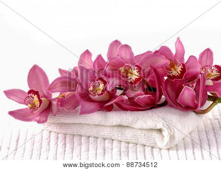 beautiful red branch orchid on spa towel