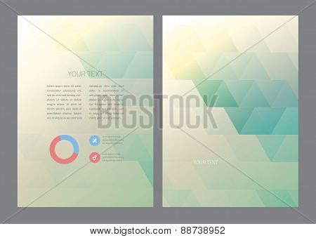 Abstract triangles Vector Brochure Template.
