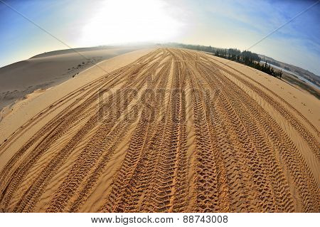Tracks On Sand
