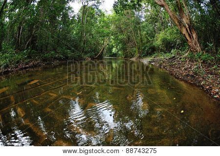 River Of Thousand Lingams