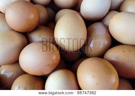Background Of Fresh Eggs.