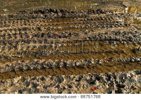 Dirty Broken Rural Road