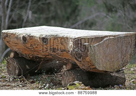 Altar In The Middle Of The Forest Consists Of A Big Tree Trunk