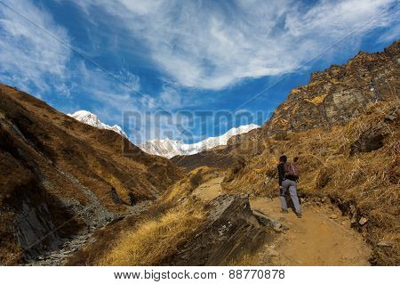 Trekking To Annapurna Base Camp In The Nepal Himalaya. Annapurna Is A Sanskrit Name Which Literally