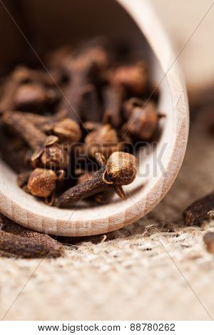 Brown dry clove aromatic spice scattered in wooden shovel on tex