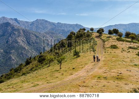 Two Hikers And Dog On Trail Near Novella In Balagne Region Of Corsica