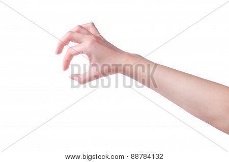Hand With Gesture