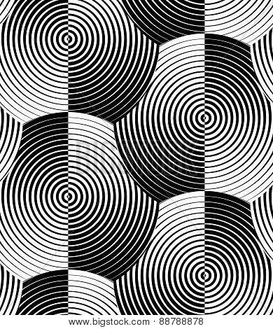 Striped Shells Black White Vector Seamless Pattern