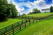 stock photo of farm-house  - rural landscape with lush green fields and farm house - JPG