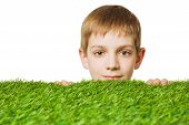 picture of peep  - Portrait of a boy peeping out through fresh spring green grass close up - JPG