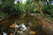 foto of lingam  - beautiful river of thousand lingams made of stones under the water - JPG