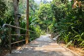 picture of bannister  - stairway for walking to the temple on the hill - JPG