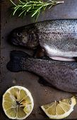 stock photo of brook trout  - trout on metal table with lemon and rosemary - JPG