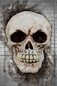 image of horrifying  - 3d rendering human skull on a stone background - JPG