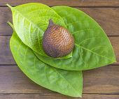 picture of green snake  - Snake Fruit and Green Leaf on the Wood Table - JPG