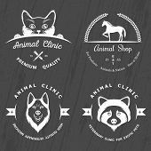 pic of petting  - Set of vintage logo and logotype elements for pet shop pet house pet and exotic animals clinic - JPG