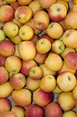 stock photo of stall  - Lot of apples in Market stall  - JPG