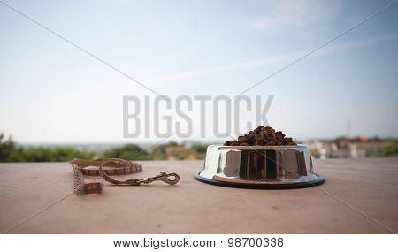 Petfood In Grey Bowl
