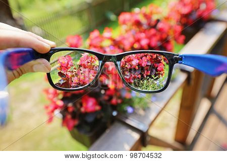 Optical Eyeglasses In The Hand Over Blurred Flower Background