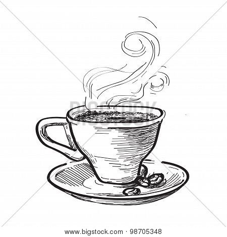 Cup of coffee. Hand drawn illustration