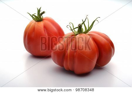 Two Beefsteak Tomatoes