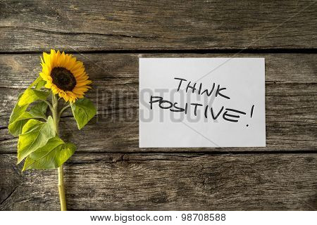 Top View Of Sunflower Lying Next To A Motivational Message Think Positive