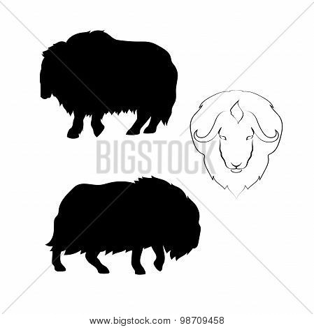 Musk-ox vector silhouettes.