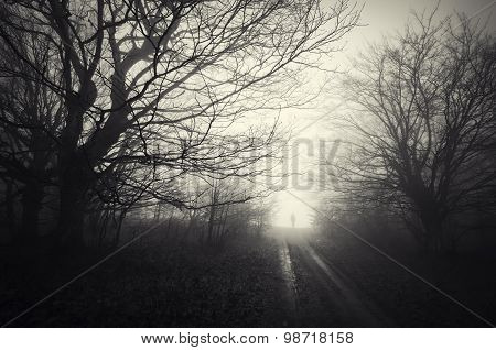 Man on road trough a dark haunted forest