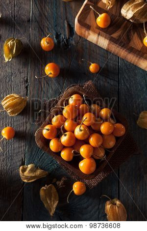 Orange Organic Cape Gooseberries
